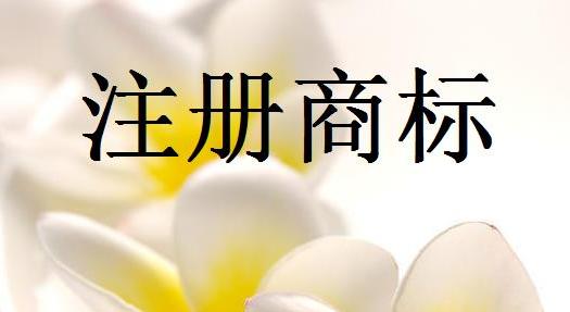 中国商标网注册商标的材料是什么?